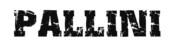 Pallini - matériel de musculation - force - haltérophilie